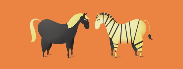 A horse and a zebra stand facing each other showing how two things can be similar but also different