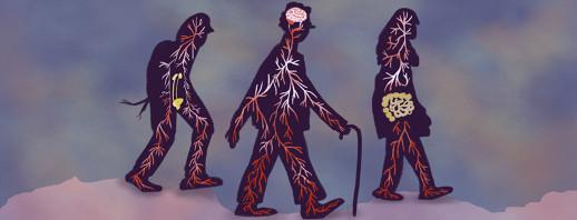 Primer on Parkinson's (Part 3C): Non-Motor Symptoms image