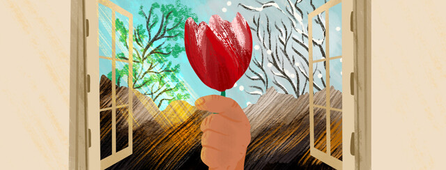 Hand holding Parkinson's red tulip in front of window showing summer trees and winter branches on either side