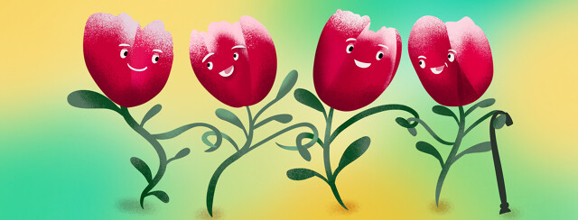 Parkinson's red tulips with faces smile and link arms on a walk together